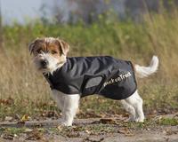 Koiran takki Hugo