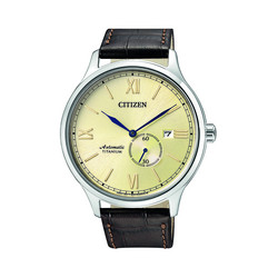 Citizen NJ0090-13P Automatic rannekello