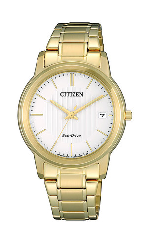 Citizen Eco-Drive FE6012-89A rannekello