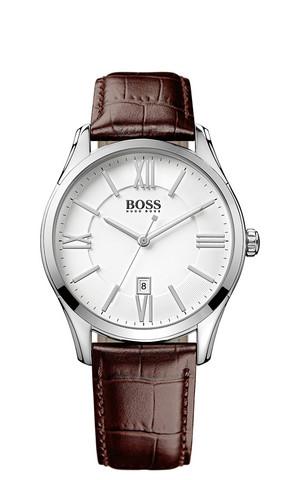 Hugo Boss HB1513021 rannekello