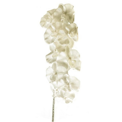 Orchid branch 93cm White