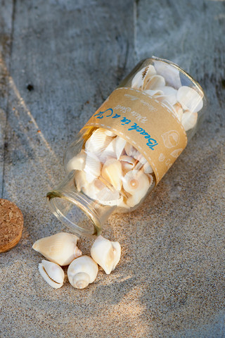 Beach in a jar White Shell