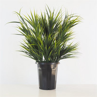 Decorative grass 60cm