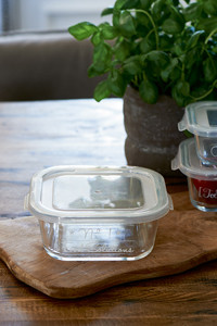 Always Fresh Food Container L
