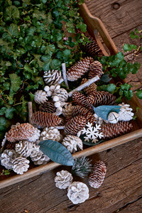 White Winter Pinecone Mix