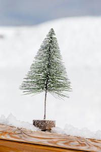 Deer Valley Christmas Tree L