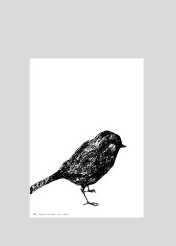 MIIKO Little bird poster 30x40