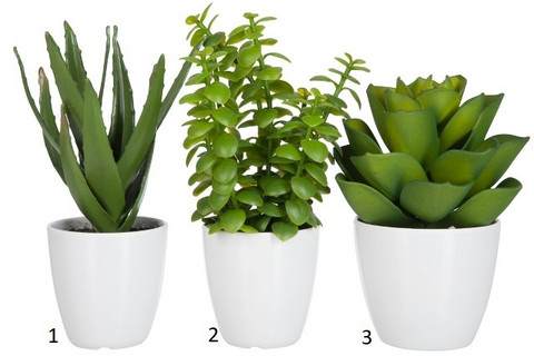 Jolipa Fake Plant in a pot