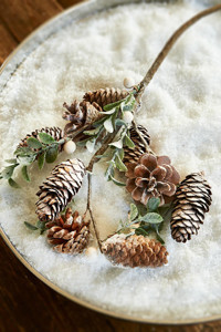 Pinecone Branch