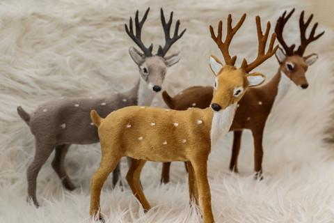 Bambi 23x28 standing
