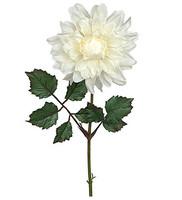 Dahlia 45 cm