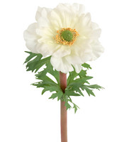 Anemone 45 cm