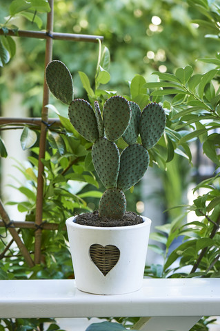 Rustic Rattan Heart Pot M