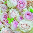 Lova Rose Napkin