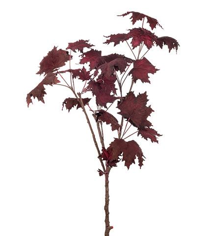 Branch 100cm