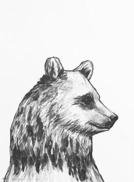 MIIKO Bear Poster 30x40