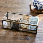 French Glass Tea Box