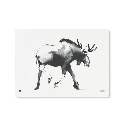 Hirvi-juliste 70x50