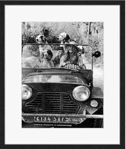 Wall art Brigitte Bardot with Dogs 60x80
