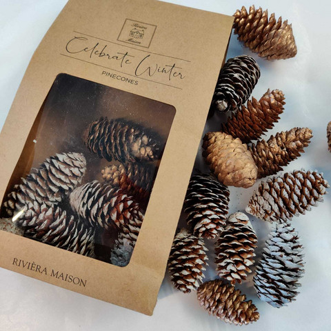 Celebrate Winter Pinecones