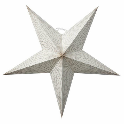 Icilinia star white 60cm
