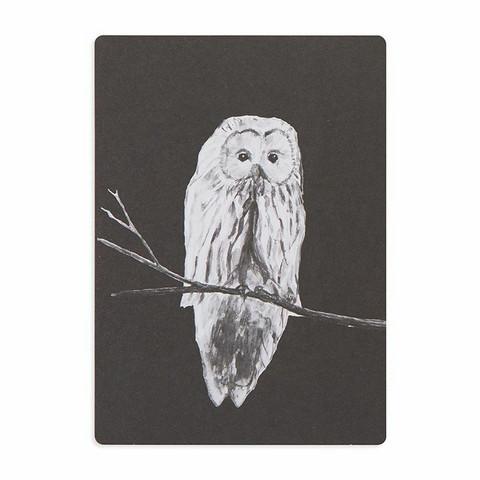 MIIKO musta pöllö postikortti