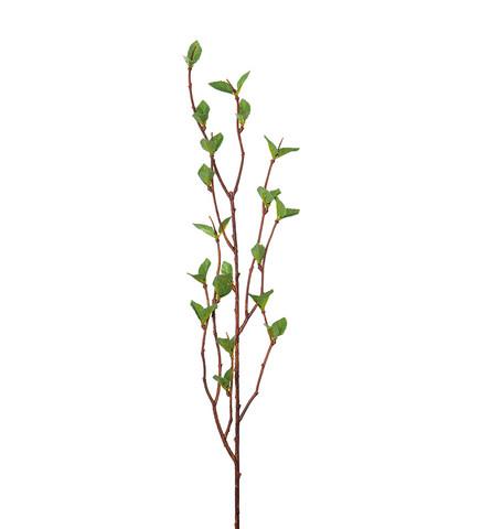 Birch Branch 50 cm