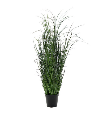 Grass bush 80 cm