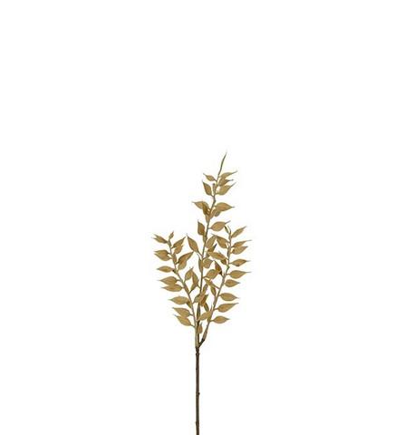 Ruscus oksa 35 cm