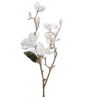Magnolia branch 65 cm