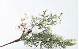 Snow berry branch