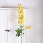Delphinium yellow