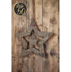 Rustic Rattan Magical Star