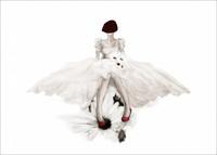 Wedding Bell Juliste 50x70