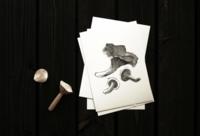 Chantarelle Mushroom art card