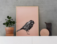 MIIKO Little Bird Poster Peach 30x40