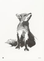 Fox Poster 50x70