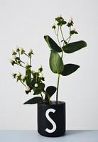 Kukkapidike