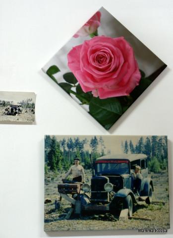 Canvastaulu Omasta Kuvasta 40 x 50