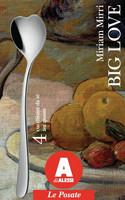 Alessi AMMI01CUS4 Big Love hopeanväriset jäätelölusikat