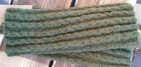 Palmikkosäärystimet, männynvihreä