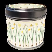 Tuoksukynttilä Narsissit, tuoksuna sitruuna