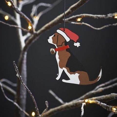 Joulukoriste, Beagle
