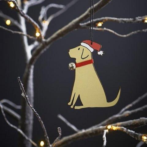 Joulukoriste, Labradorinnoutaja, vaalea