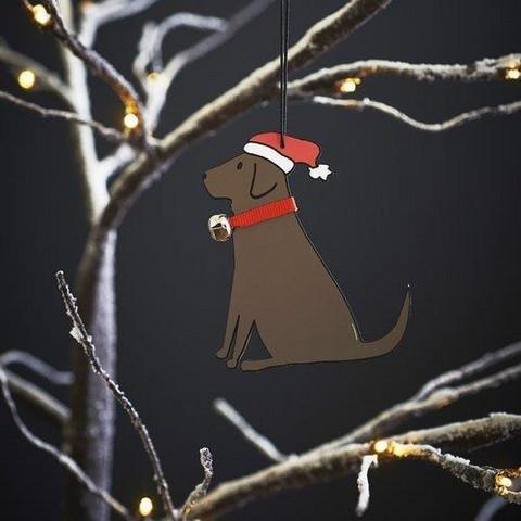 Joulukoriste, Labradorinnoutaja, ruskea