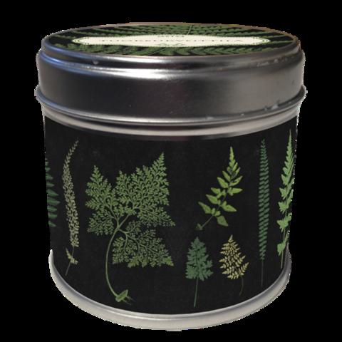 Tuoksukynttilä saniaiset, tuoksuna metsä