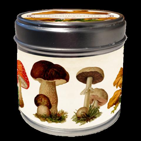 Tuoksukynttilä sienet, tuoksuna appelsiini