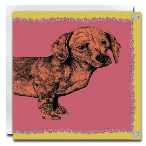 Postikortti mäyräkoirat, eri värejä