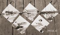 Merelliset patalaput, useita erilaisia