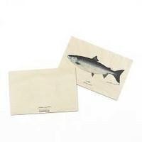 Puiset postikortit